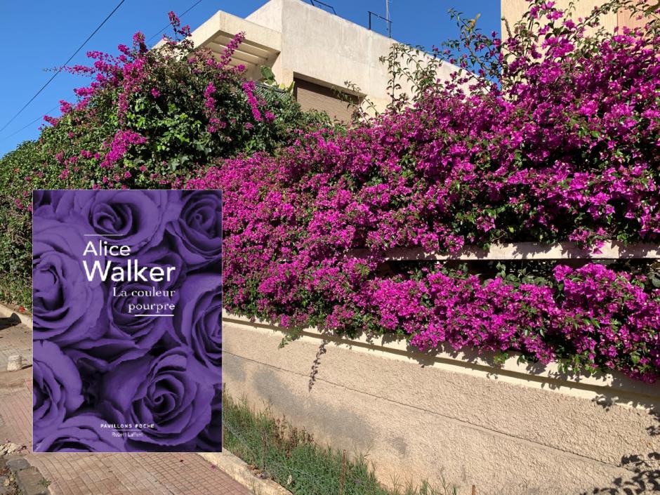 La couleur pourpre – Alice Walker